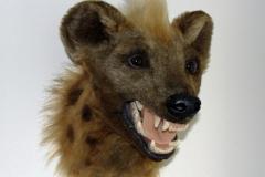 Hyäne-fertig-03