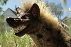 Hyena-01