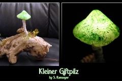 Pilz-Licht-Giftpilz