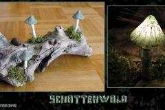 Pilz-Licht-Schattenwald