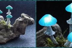 Pilzlicht-Gletscherpilze-04