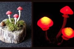 Pilzlicht-Witchwood-04
