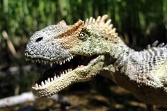 Allosaurus-02