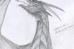 Drachenwut-Psydrache
