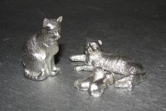 Zinn-Katzenfamilie